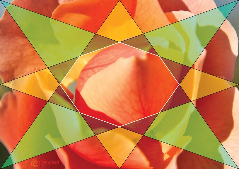 flower-octagon